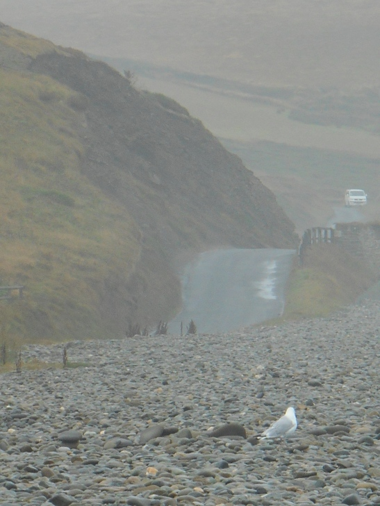 Have motorists seen the ghostly figure of a young man run across the road and vanish into the rock face at Newgale?